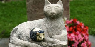 Know-About-the-Cat-Sculpture-on-TheStuffofSuccess
